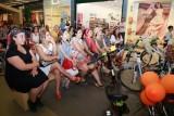 Süslü Kadınlar Bisiklet Turu, organizasyonu